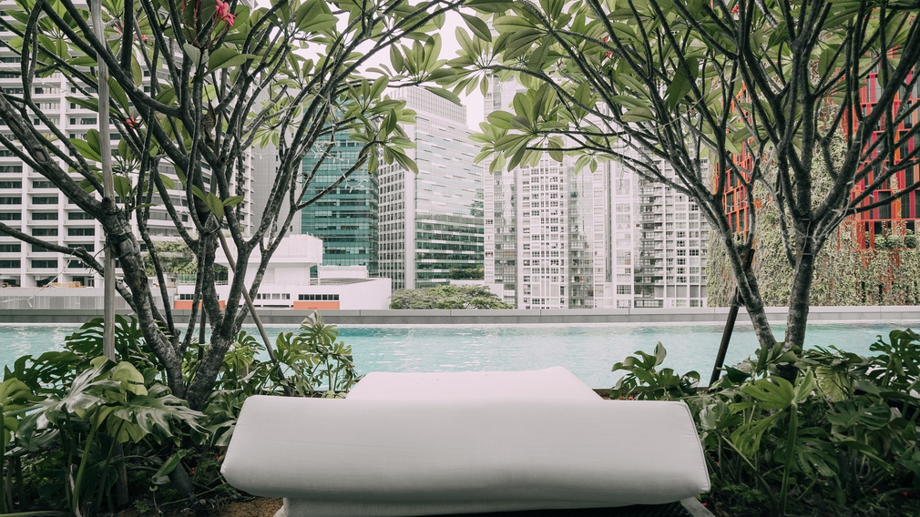 Pool at the Singapore Sofitel