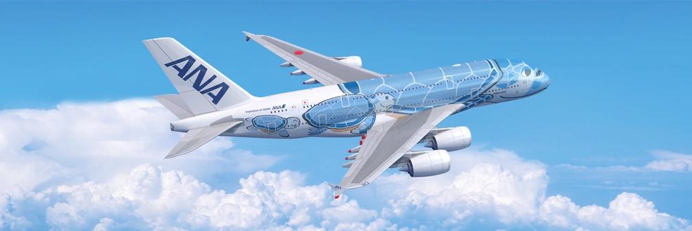 ANA blue plane