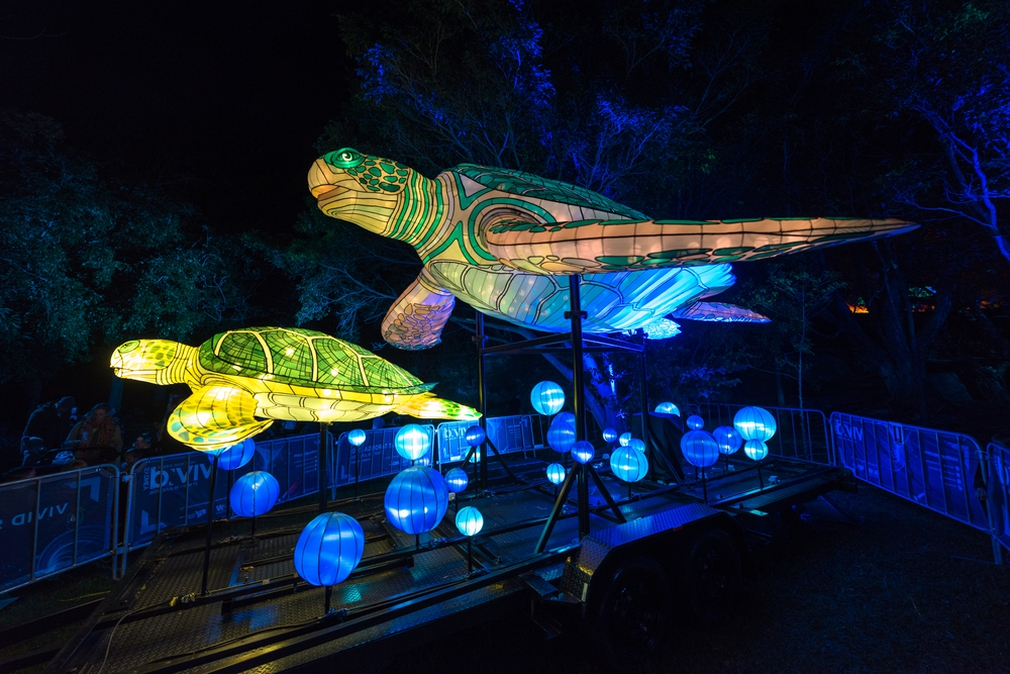 Turtle lights at Taronga Zoo for Vivid Sydney