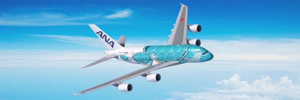 ANA green plane