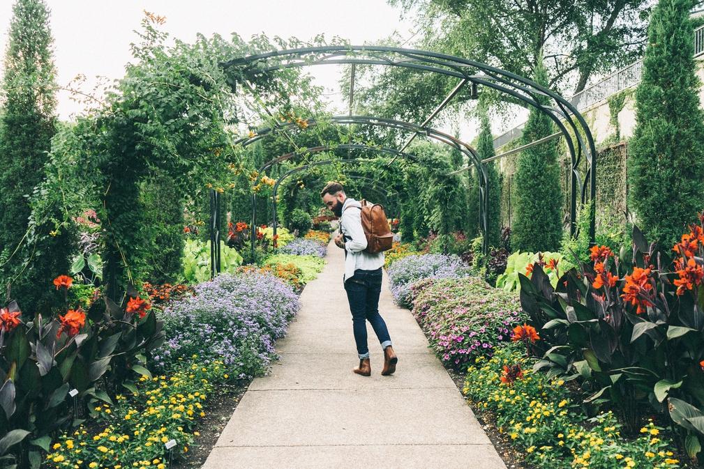 Man walking through garden