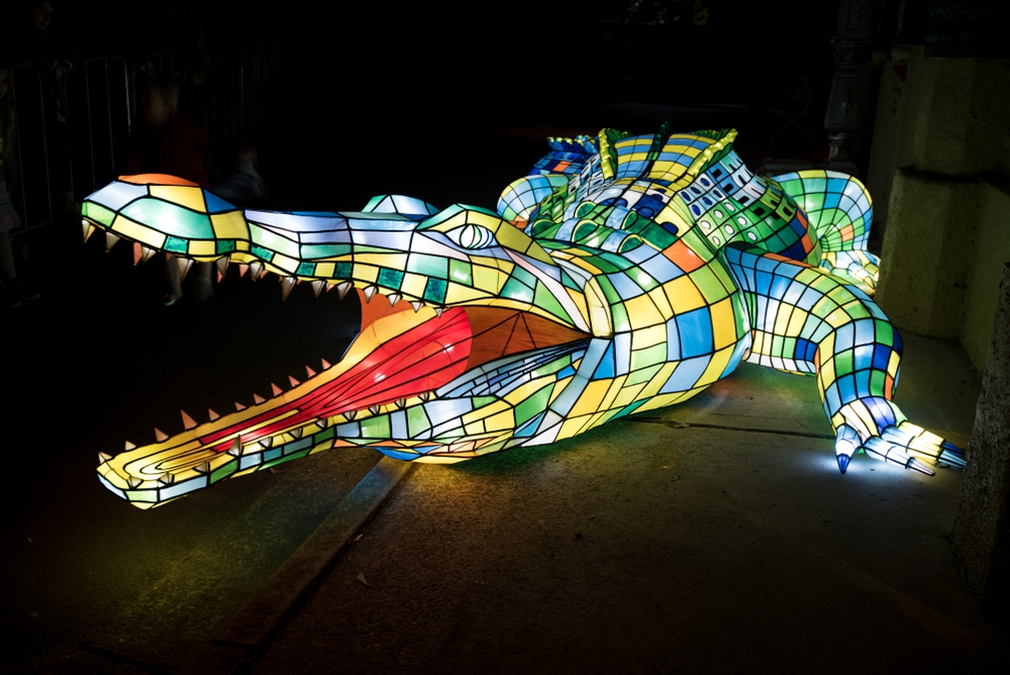 Crocodile light at Vivid Sydney