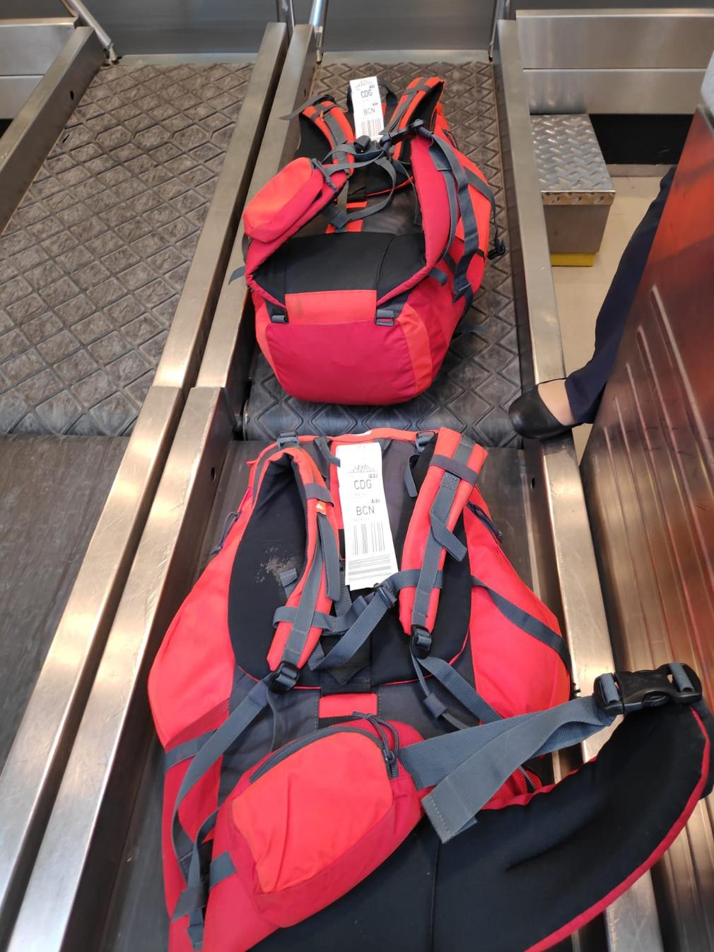Bags on conveyor belt