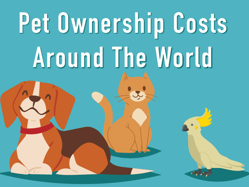 Pet ownership costs around the world hero
