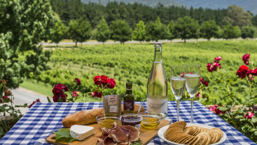 A picnic with wine and nibbles